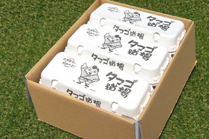 画像5: 紅鈴こまち(赤玉卵)60個入り化粧ケース